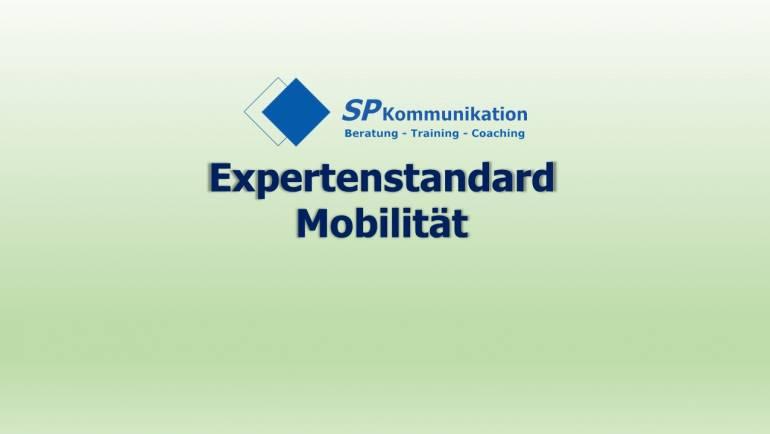 Expertenstandard Mobilität